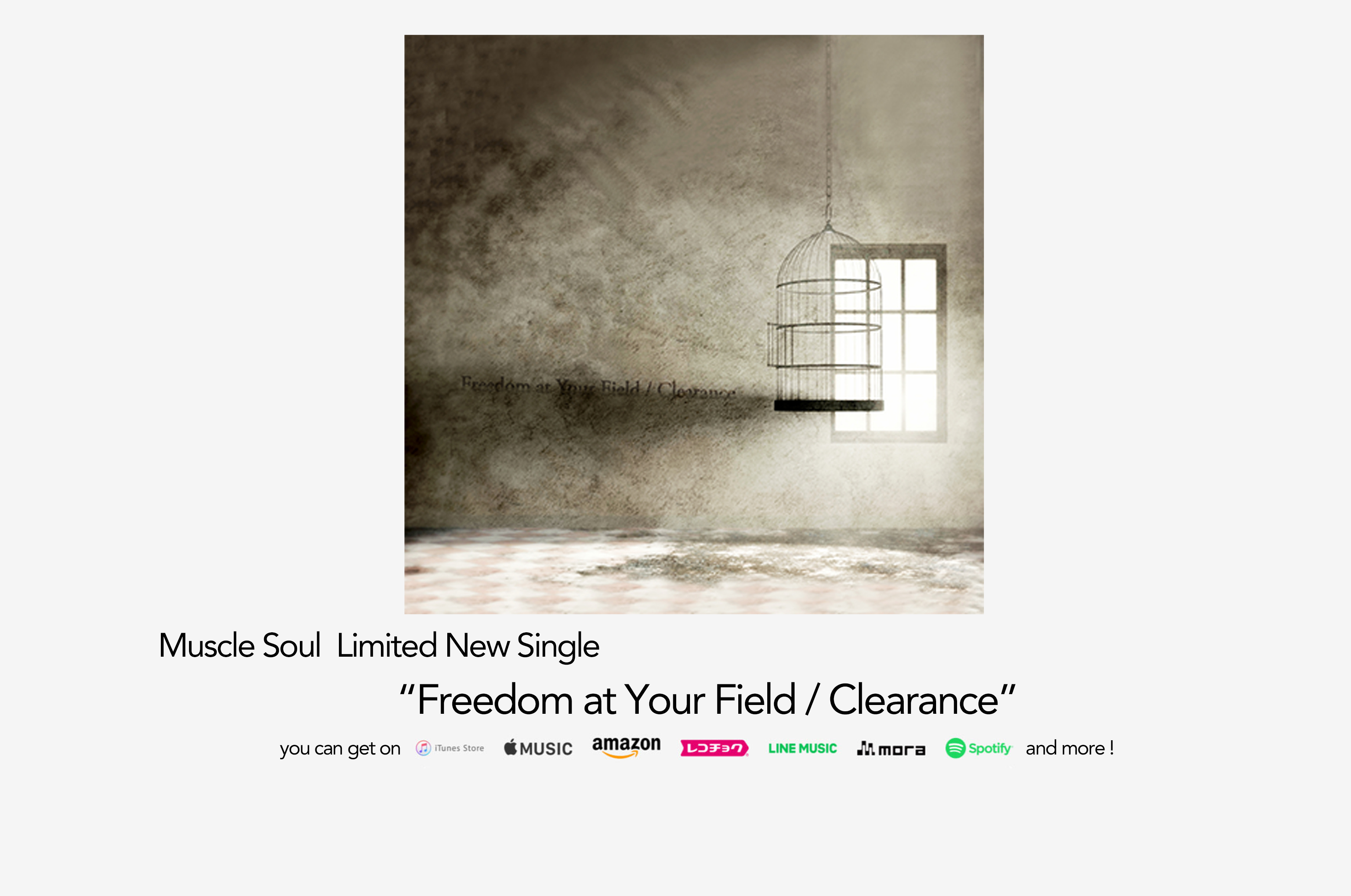 muscle soul new single freedom at your field clearance out now